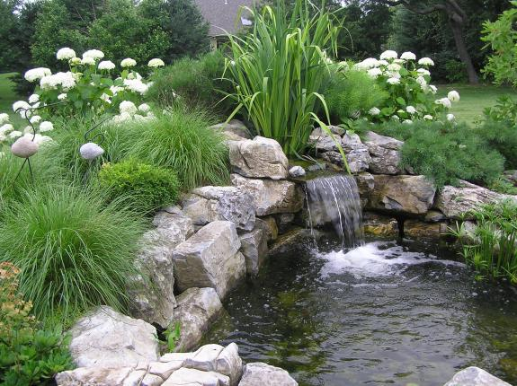Ponds waterfalls allentown landscape company for Planting around a pond suggestions