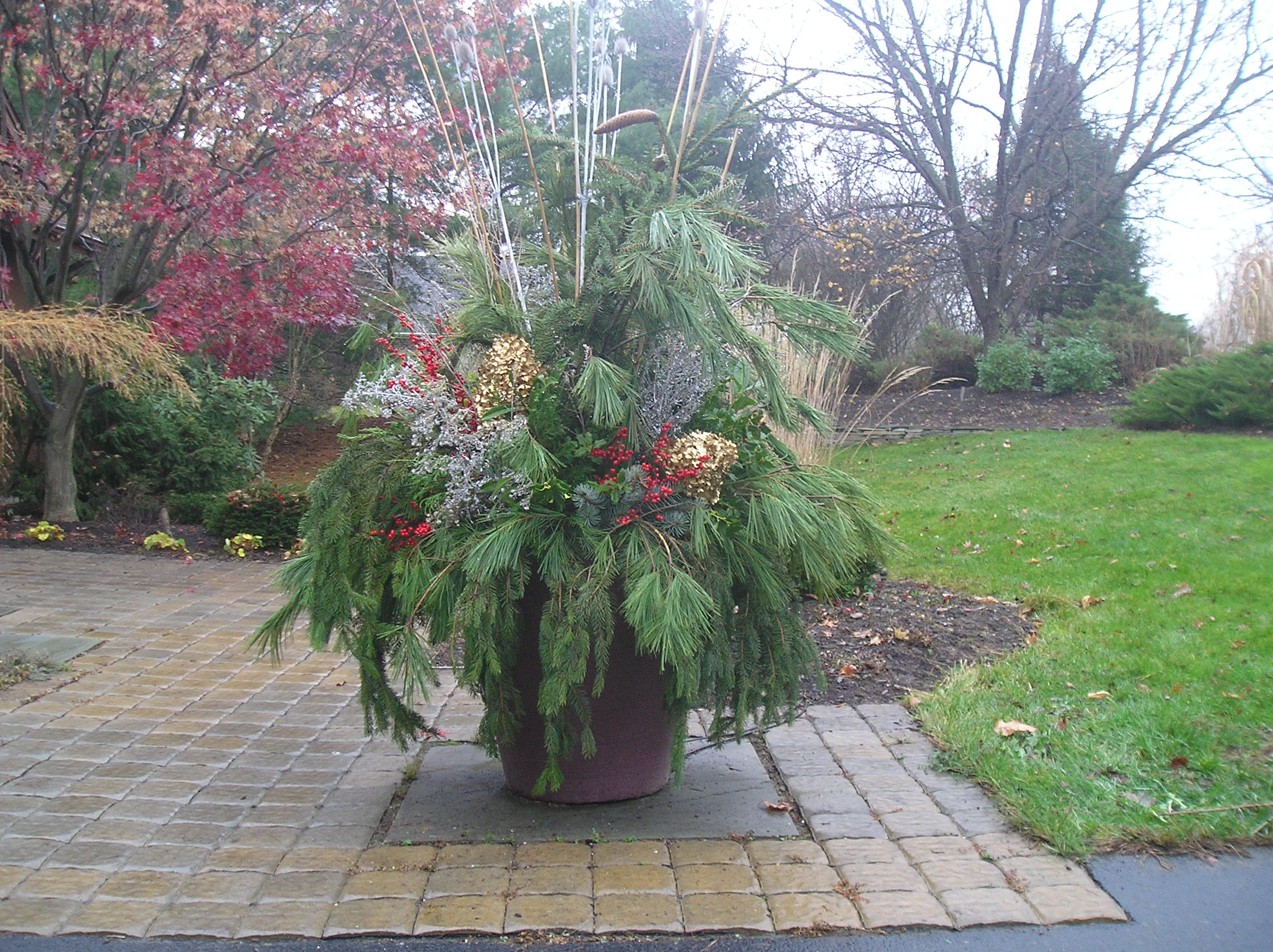 Container gardening, winter pots, decorating for Christmas, Christmas containers, outdoor containers, entry containers for winter, Allentown, PA, Bethlehem, PA