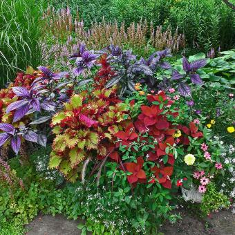 garden pot in perennial landscapes