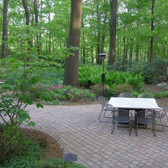 Paver Patio in Woodland Landscape