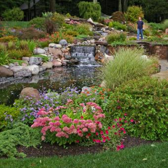 Perennial plantings around pond